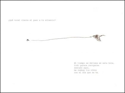 marco_12-14-paso-desordenado