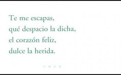 Pist_cuch-poemas_08