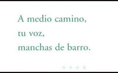Pist_cuch-poemas_B09